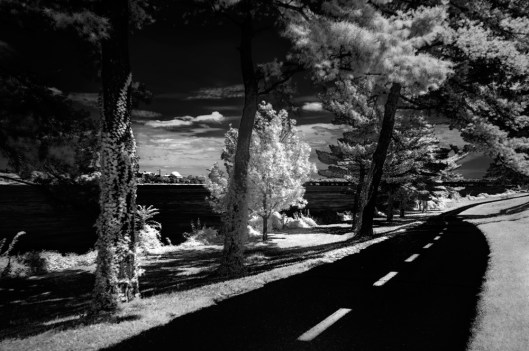 Bike Path IR