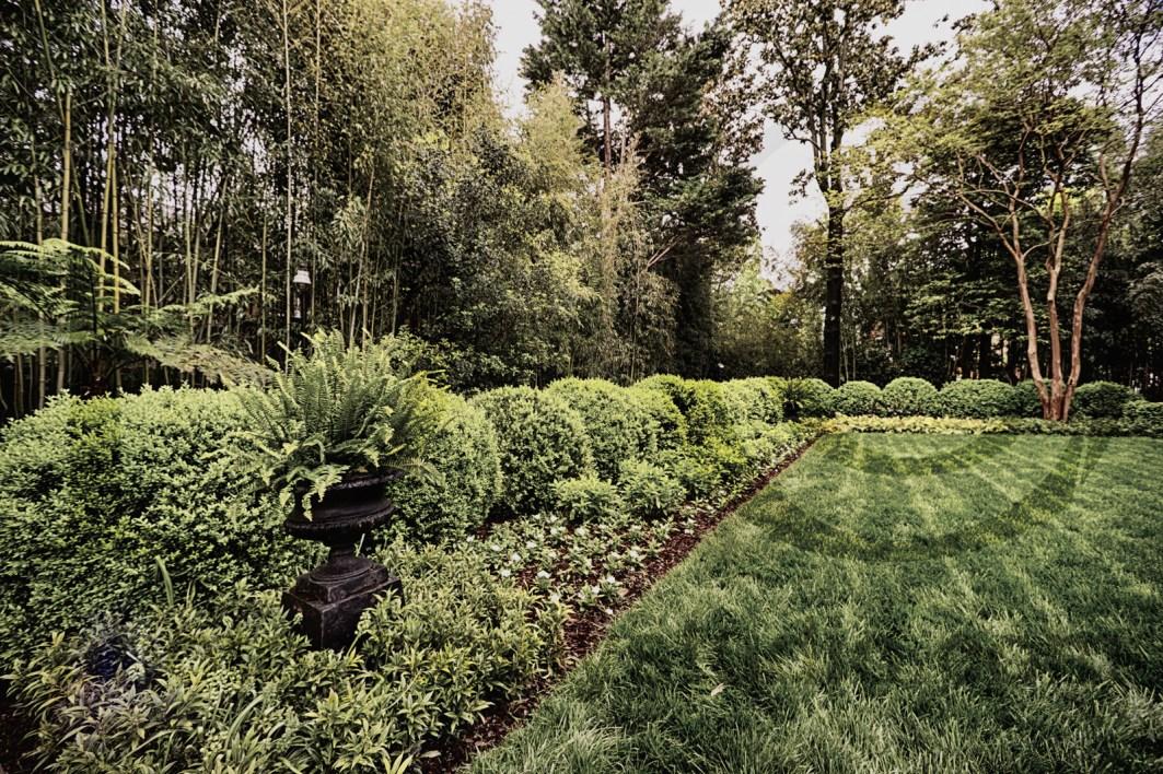 Georgetown_Garden_Plank_02