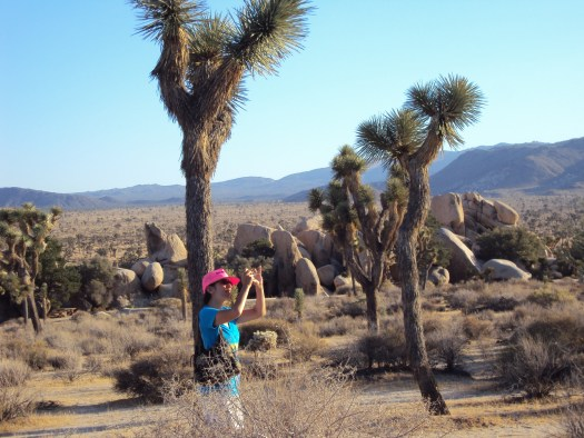 Here I am taking photos at Joshua Tree National Park.