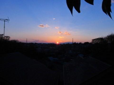 優美な夕日