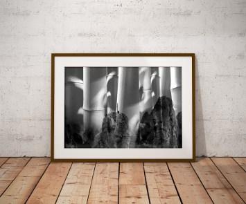авторское фото на стену