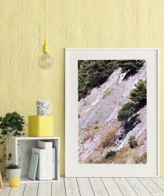 фото на стену, куст и гора