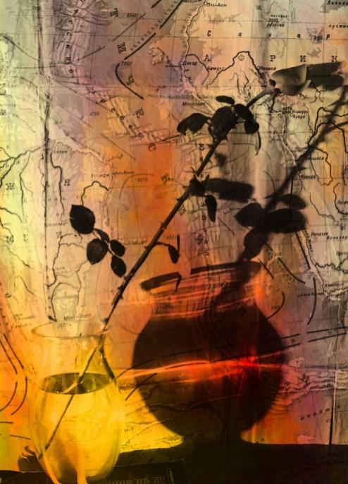 авторское фото, натюрморт с розами и графином