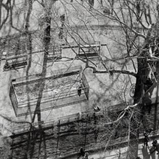 Сюрреалистические сюжеты в фотографии для оформления интерьеров