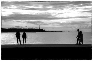 Финский залив. Петродворец