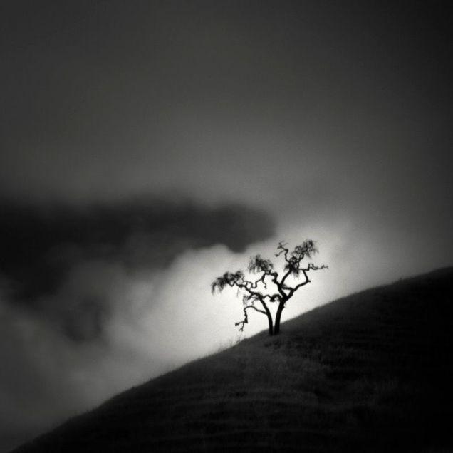 Инфракрасная фотография. Nathan Wirth