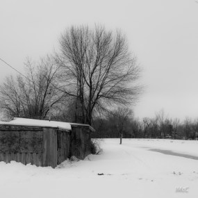 imcc_shack by frozen canal-7014