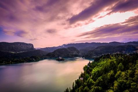 Bled (2013)