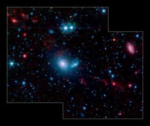 Dwarf Galaxies Swimming in Tidal Tails