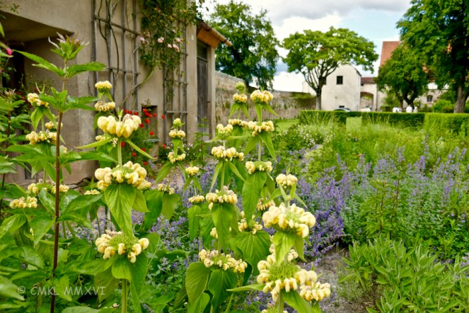 The lush gardens to behold everywhere,