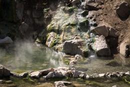 A Lone Stream