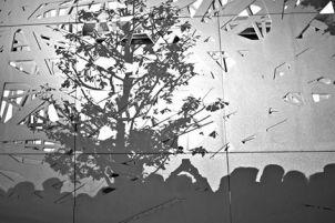 Erika Mambretti, L'albero della fila VS l'albero della vita, Expo 2015