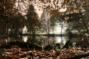 03 foglie