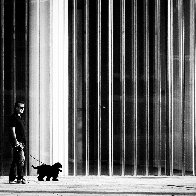 Giancarla Pancera 006, Citylife, Blacky