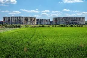 Luigi Alloni 013, agricoltura e chimica non lontano da Milano
