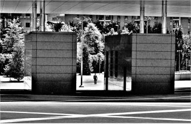 Silvia Questore 001, Portello e City Life tra Architettura, Vita e Natura