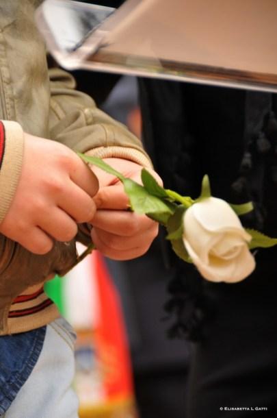 tante rose bianche in piazza capuana