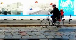 milano bicycle 12