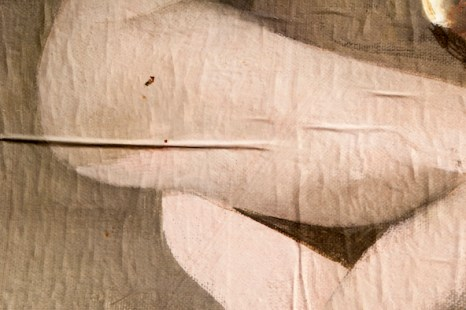 7 meta morfosi elisabetta gatti biggicc801