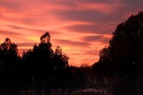 tramonto al forlanini daniela loconte foto 3