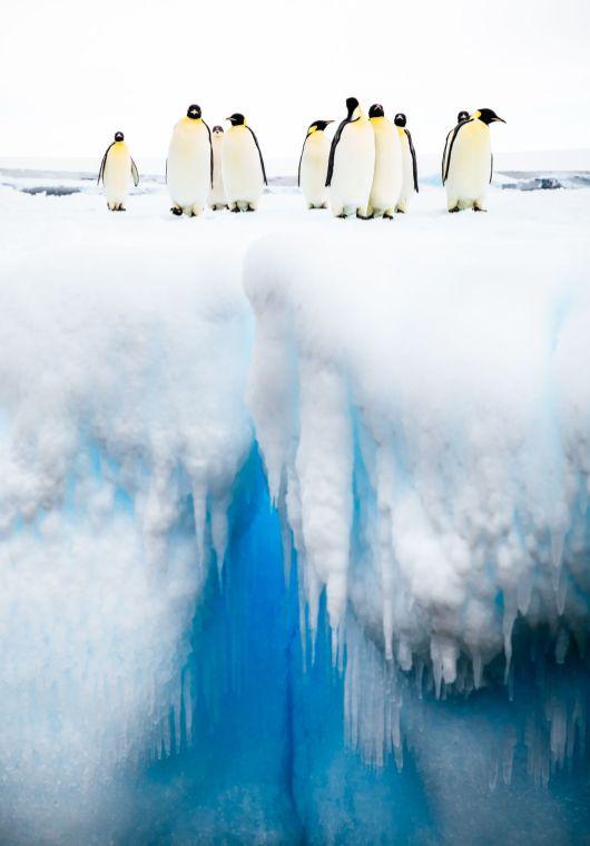 Andrew Peacock, Mind the Gap, 2018, Ross Sea (Antarctica)