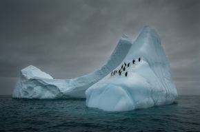Mariusz Potocki, Travelers 2018, Bransfield Strait (Antarctica)