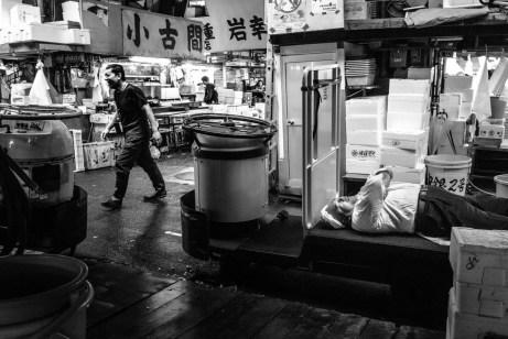 TokyoTsukiji