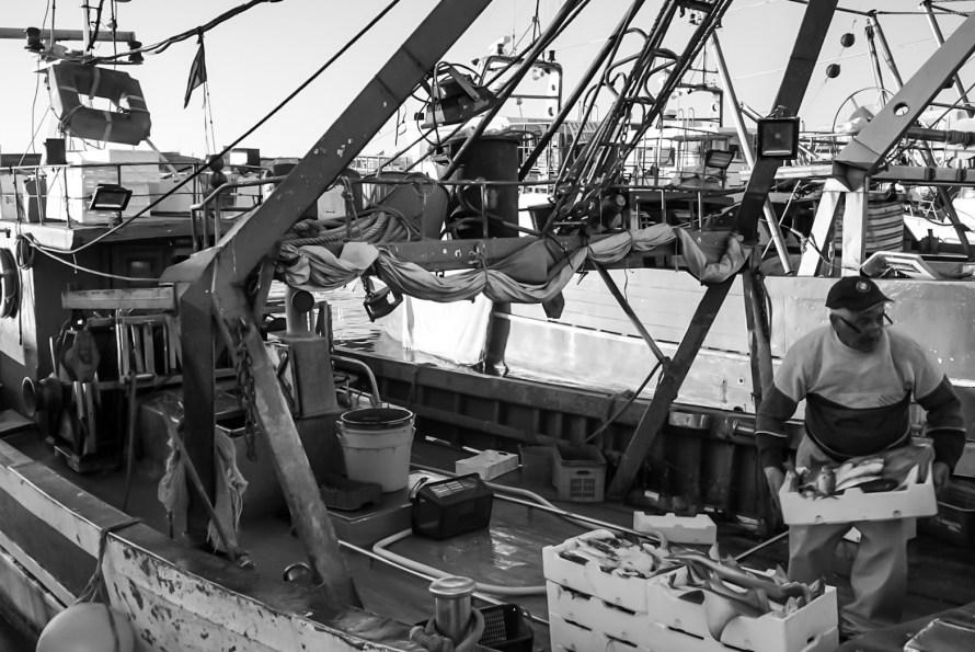 Daniele Fumagalli, Trani, La pesca, Mestieri da riscoprire, Contest Fotografico PhotoMilano