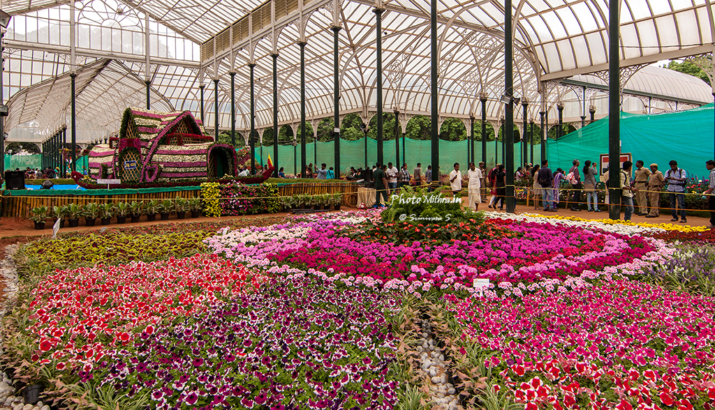 Riot of colors at Lalbagh flower show
