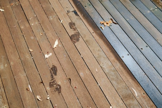 After the rain - footprints