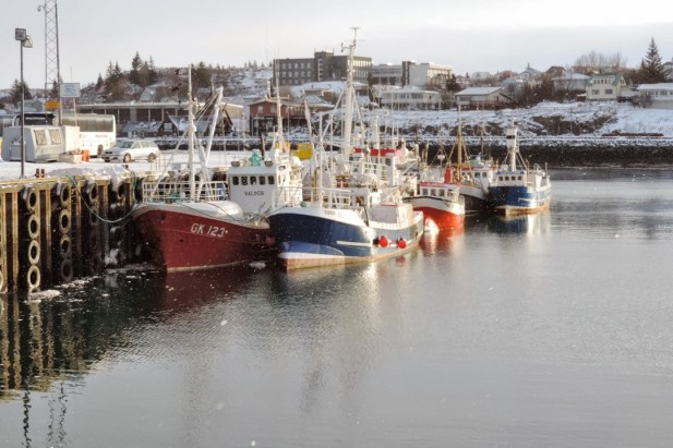 Port de Rijkjavik