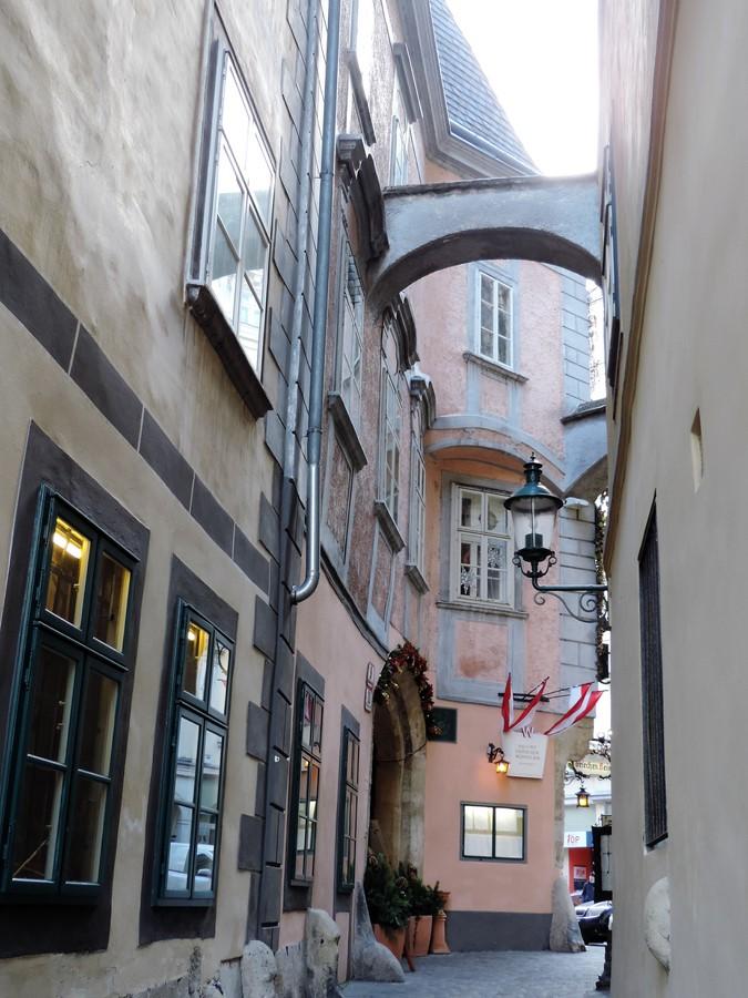 Vienne 12
