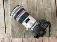 Canon 200mm f2 lens Yellowstone National Park WY Sparky Stensaas-2-3