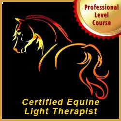 Certified Equine Light Therapist (CELT)