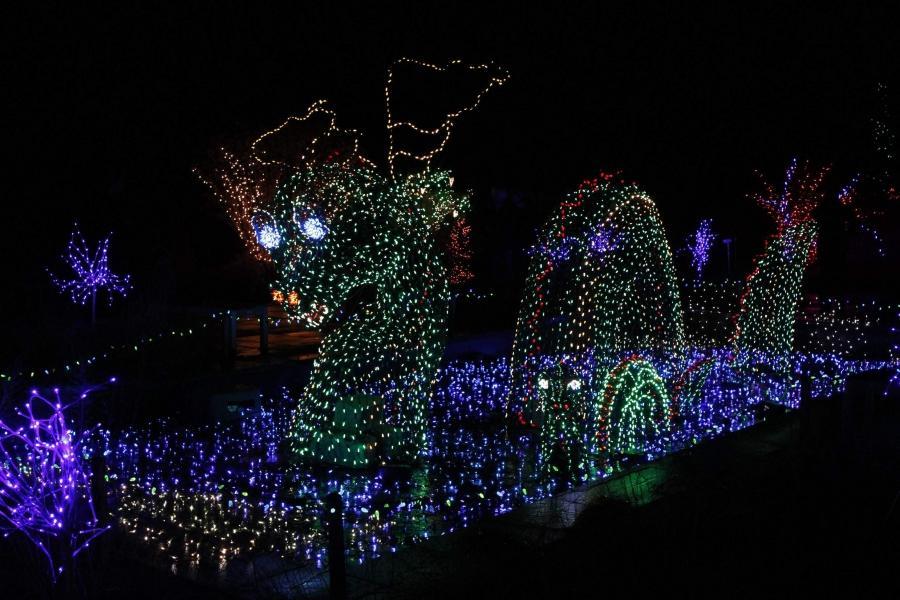 Brookside Gardens Lights