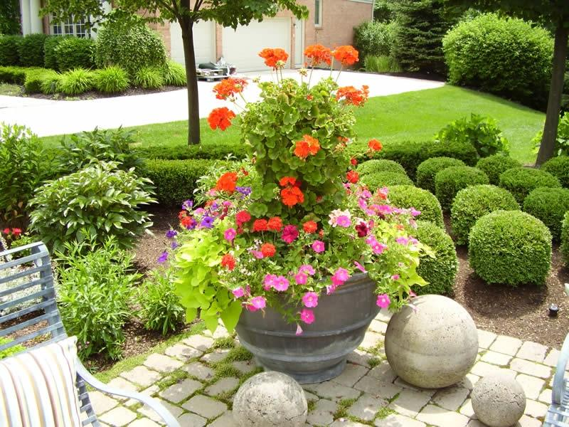 Better Homes Gardens Container Ideas