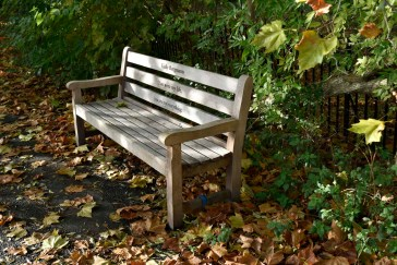 orleans_bench_1_5_1500