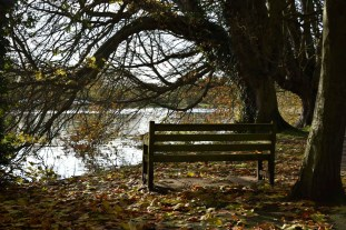 orleans_bench_4_4_1500