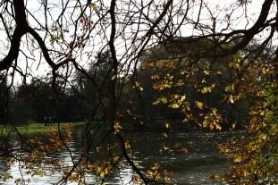 orleans_gardens_34_1500