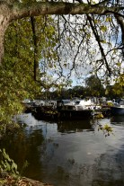 orleans_gardens_9_1500