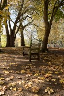 twickenham_riverside_16-11-19_02_1500