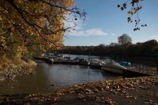 twickenham_riverside_16-11-19_15_1500