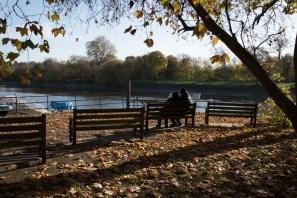 twickenham_riverside_16-11-19_18_1500