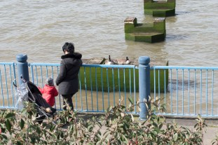 woolwich_170326_036_1500
