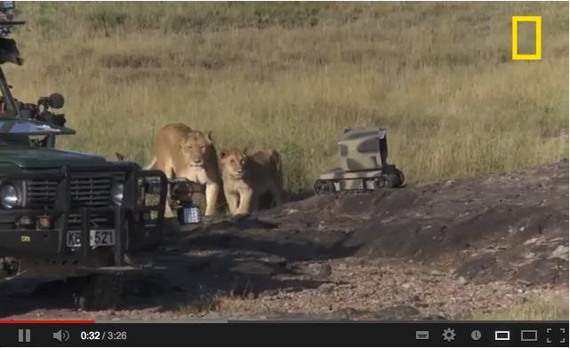 Nick Nichols fotografeert leeuwen met robot en drone