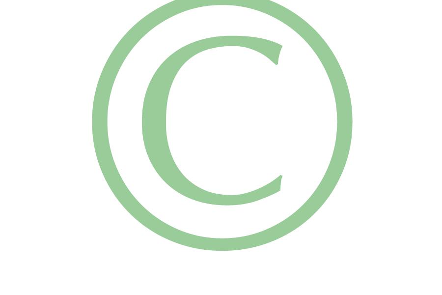 Meer aandacht voor auteursrecht foto's, ook bij Rijdende Rechter