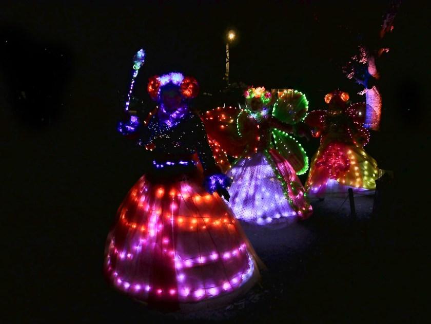 Luna Light Festival fairies - midwinter, Queenstown