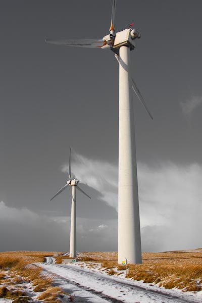 Another photograph of the windmills close up...