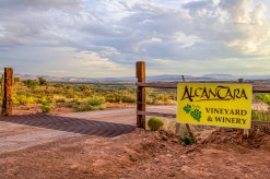 Alacantara Vineyard - near Cottonwood, AZ