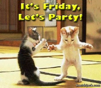Cats celebrating Friday
